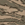 airforce desert